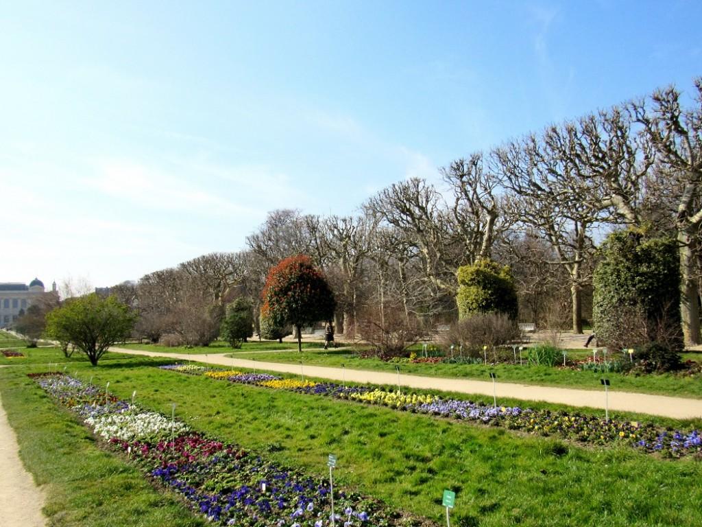 jardin des plantes paris bis
