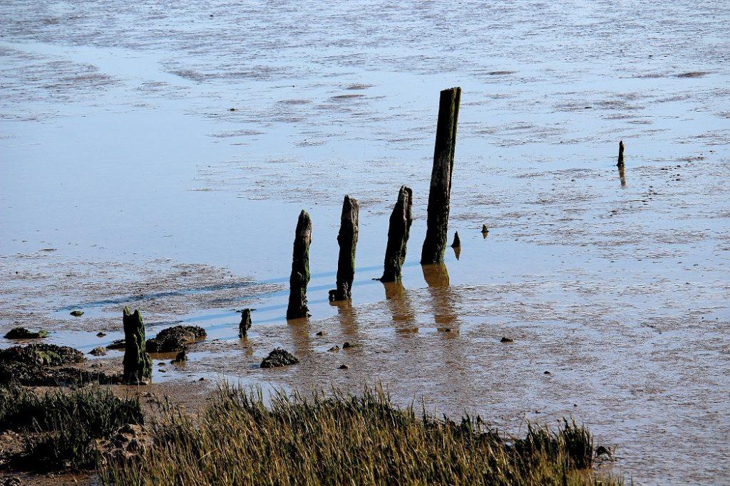L'aiguillon sur mer en Vendée