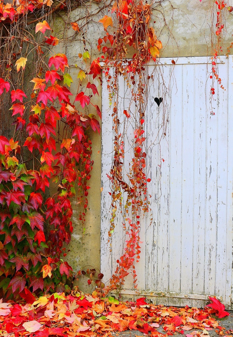 porte automne only laurie