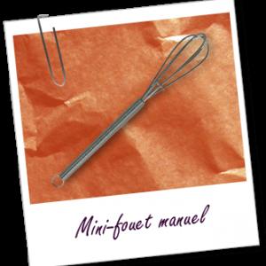 FT_trombone_Matériel-fabrication-cosmétique-nettoyage_mini-fouet only laurie
