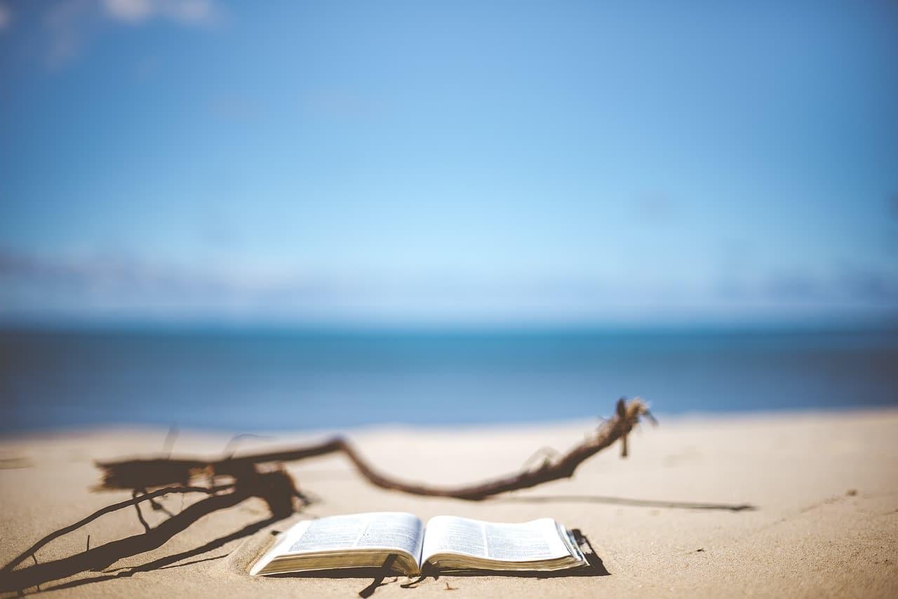 livres pour l'été only laurie