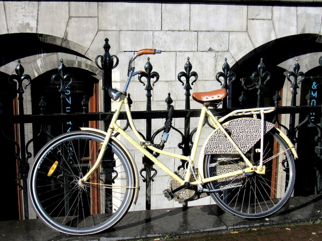 vélo léopard à amsterdam