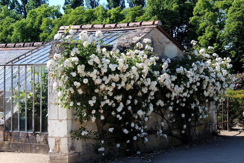 Jardin romantique du château de Chenonceau.