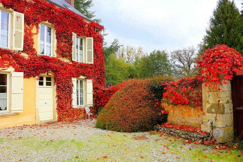 maison feuilles automne only laurie