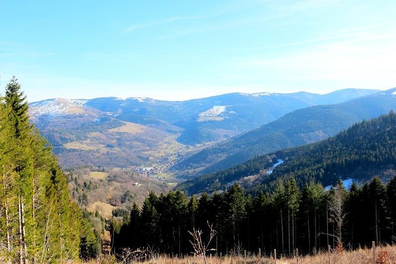 Partez faire de magnifiques randonnées dans les Vosges. Idéal pour un été en pleine nature.